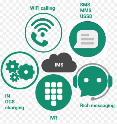 IMS Service